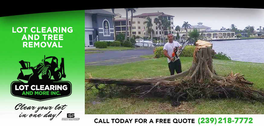 Lot Clearing and Stump Removal in and near Cape Coral Florida