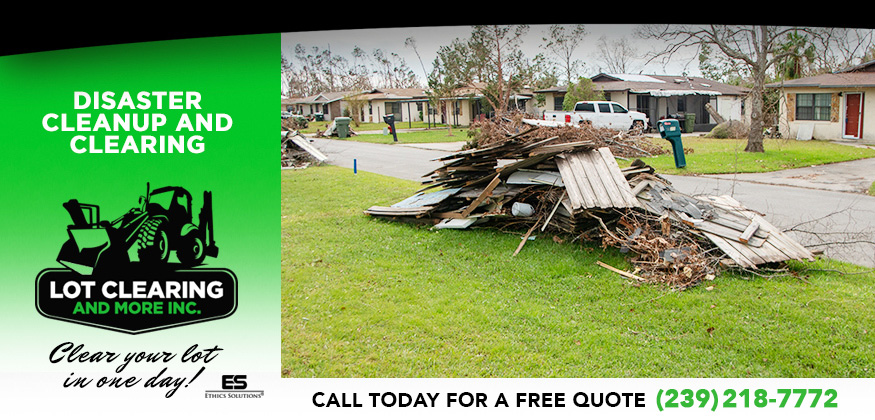 Disaster Cleanup and Clearing in and near Fort Myers Florida