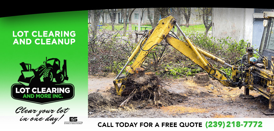 Lot Clearing and Cleanup in and near Fort Myers Florida