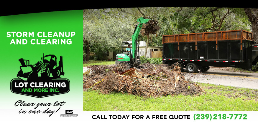 Storm Cleanup and Clearing in and near Fort Myers Florida