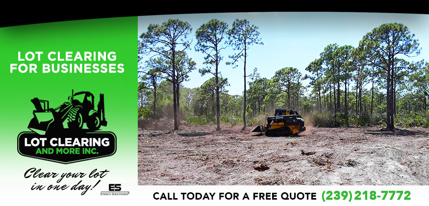 Lot Clearing Services in and near Lehigh Acres Florida