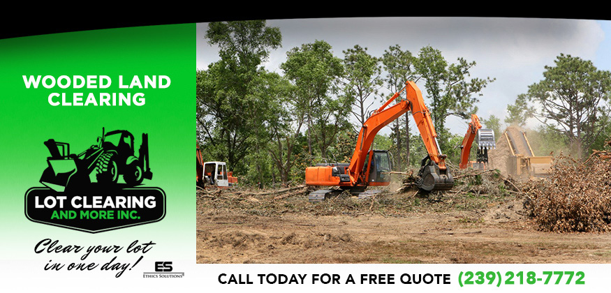 Lot Clearing and Tree Removal in and near Lehigh Acres Florida