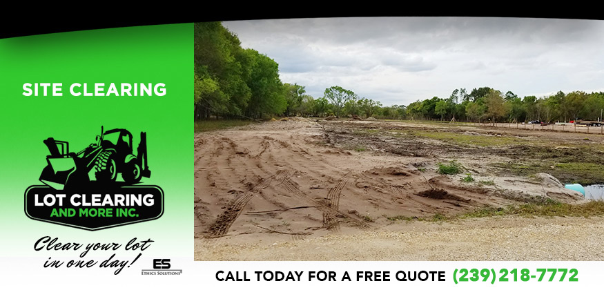 Site Clearing in and near Lehigh Acres Florida